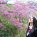 年齢別に考える英語教育【中学校編】:高校受験英語